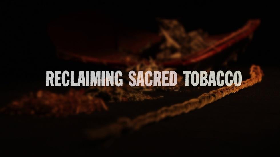 Reclaiming Sacred Tobacco image