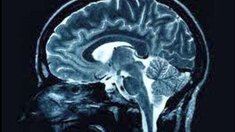 Wavelengths: The Thinking Machine