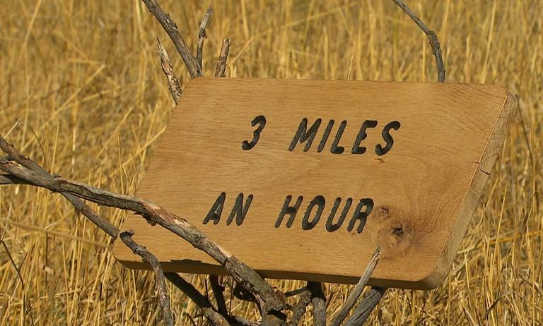 3 Miles An Hour