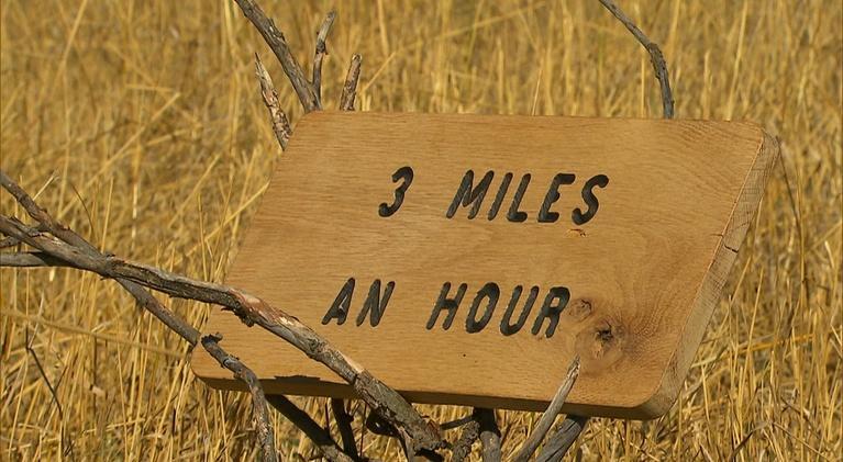 3 Miles An Hour: 3 Miles An Hour