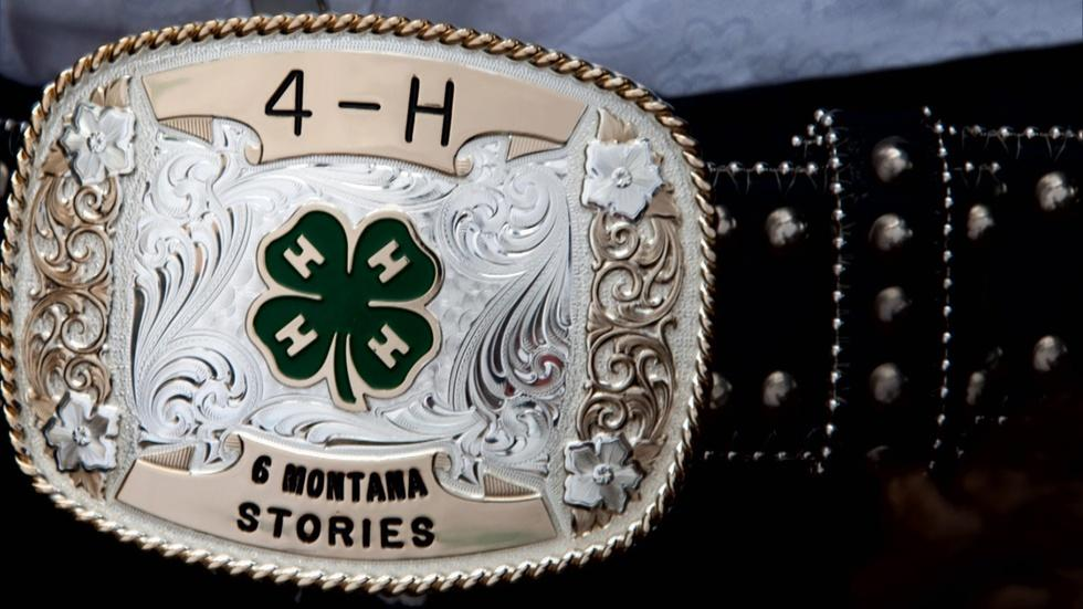 4H: Six Montana Stories image