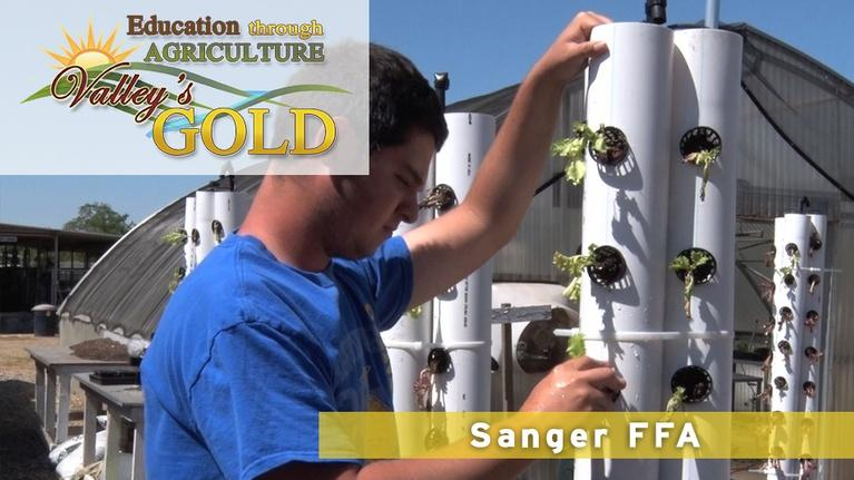 Valley's Gold Season 3: Education through Agriculture: FFA