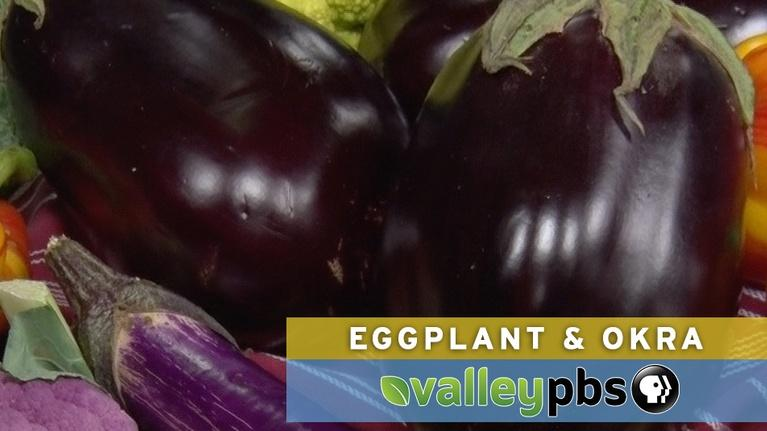 Valley's Gold Season 4: Valley's Gold: Eggplant & Okra