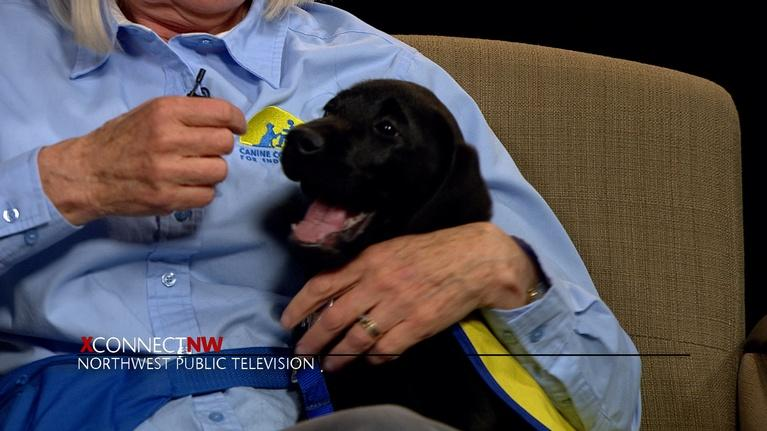 xConnect Northwest: Canine Companions for Independence