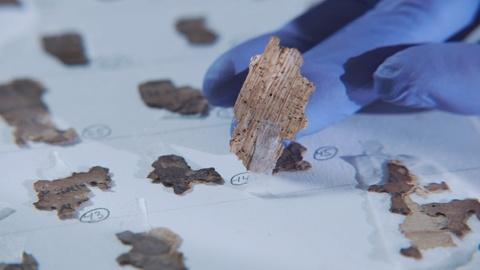 NOVA -- Dead Sea Scroll Detectives