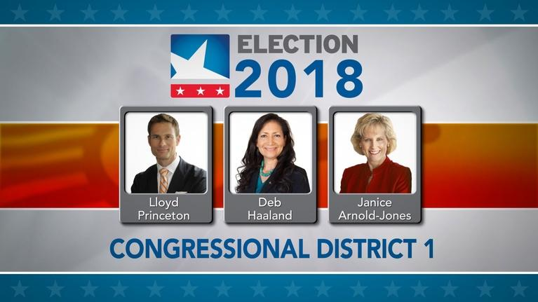NMPBS Election Coverage: 2018 First Congressional District Candidate Forum