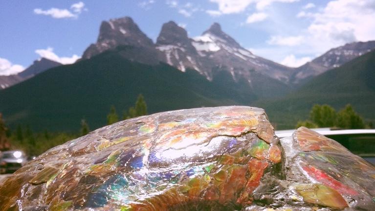 Northwest Profiles: A Symphony Of Colour