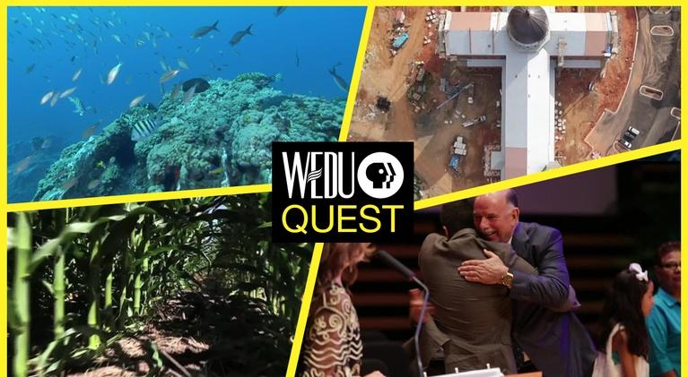 WEDU Quest: Episode 311