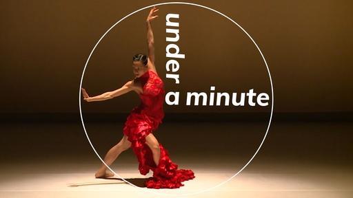 Under a Minute: Ballet Hispánico's Eduardo Vilaro