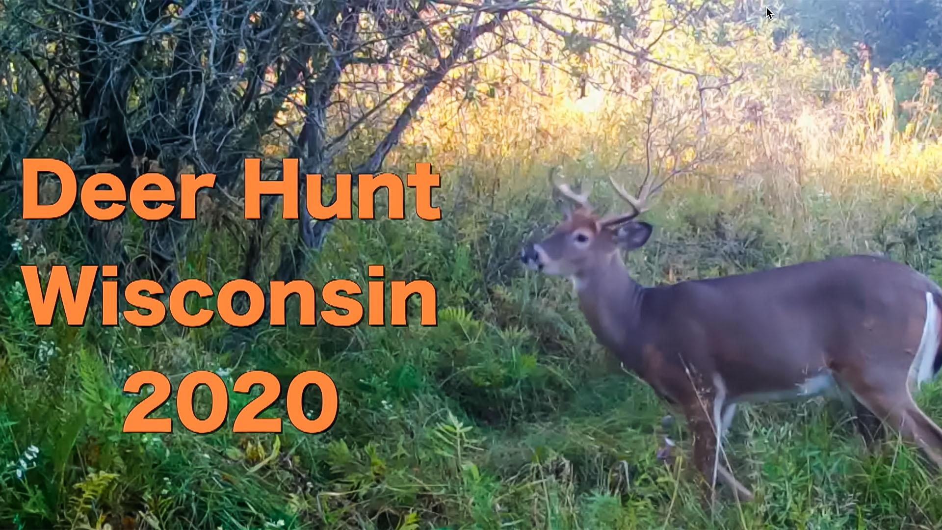 Wisconsin videos
