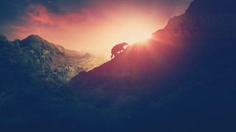 NOVA -- Rise of the Mammals