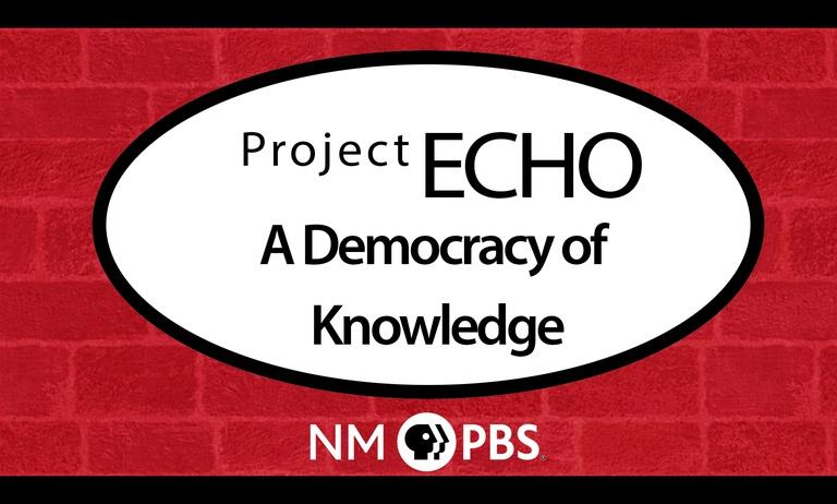 Project Echo: A Democracy of Knowledge