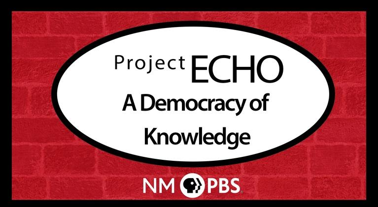 Project Echo: A Democracy of Knowledge: Project Echo: A Democracy of Knowledge