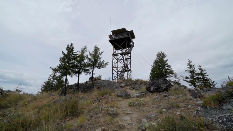 Environment: The Last Lookout