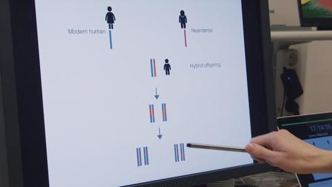 Decoding Neanderthal DNA