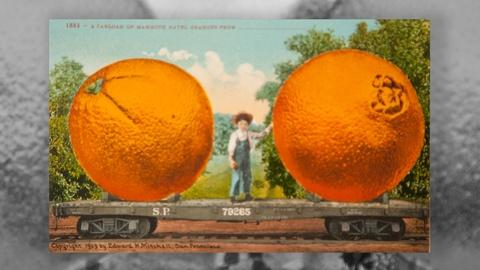 LA Foodways -- Ch 2: King Citrus and the Selling of the California Dream