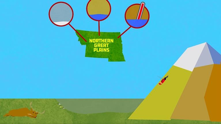 Global Weirding: Climate Change in the Midwest & Northern Great Plains