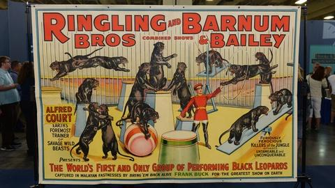 Antiques Roadshow -- S21 Ep12: Appraisal: Ringling & Barnum Circus Poster, ca. 19