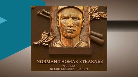 Negro Leagues/DPS Foundation