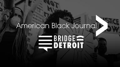 Black Lives Matter Detroit Chapter