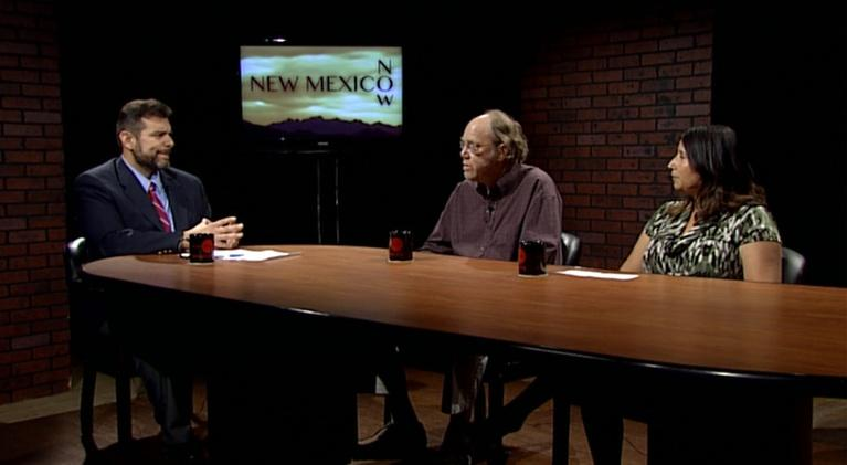 New Mexico Now: Race for Governor of NM, Republican Primary Distrcit 2, PNM