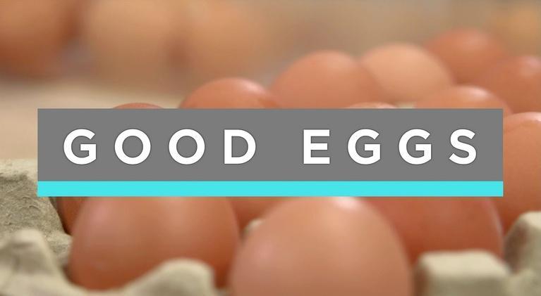 Feast TV: Good Eggs