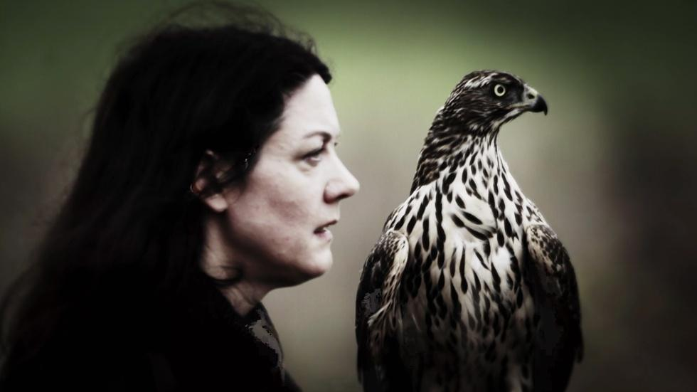 "Author Helen Macdonald on ""H is for Hawk"" image"