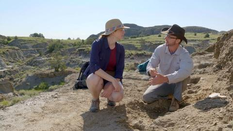 Prehistoric Road Trip -- The Meek Survivors