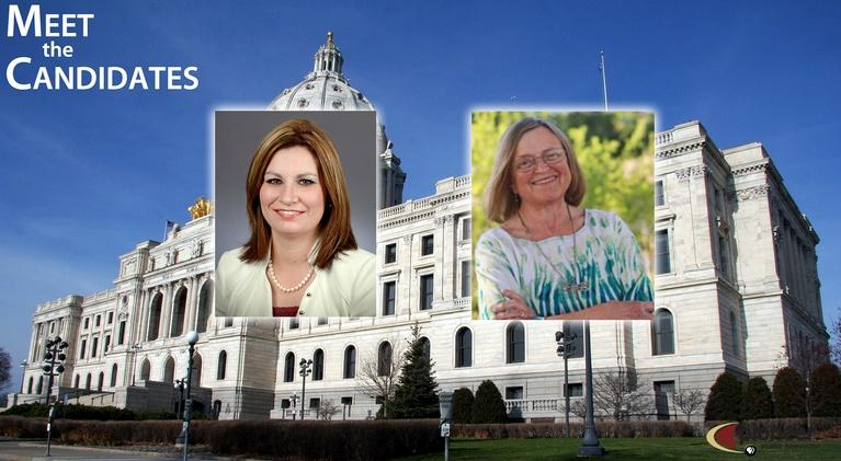 Meet The Candidates: House District 8B