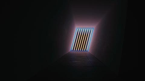 Immersive Light