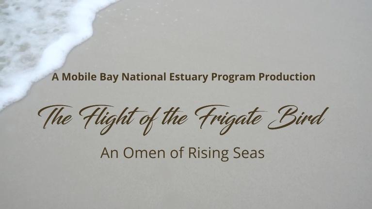 Alabama Public Television Presents: Flight of the Frigate Bird