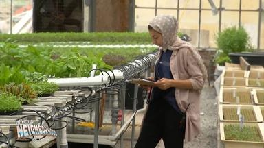 Generation of farmers use alternative growing techniques
