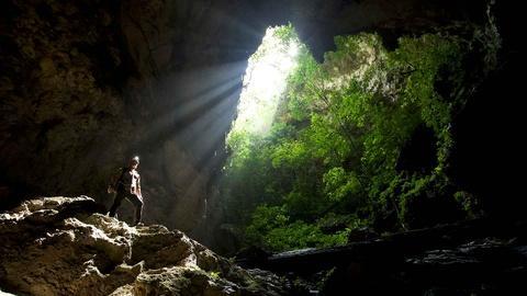 Expedition -- Borneo – Dark Shadow