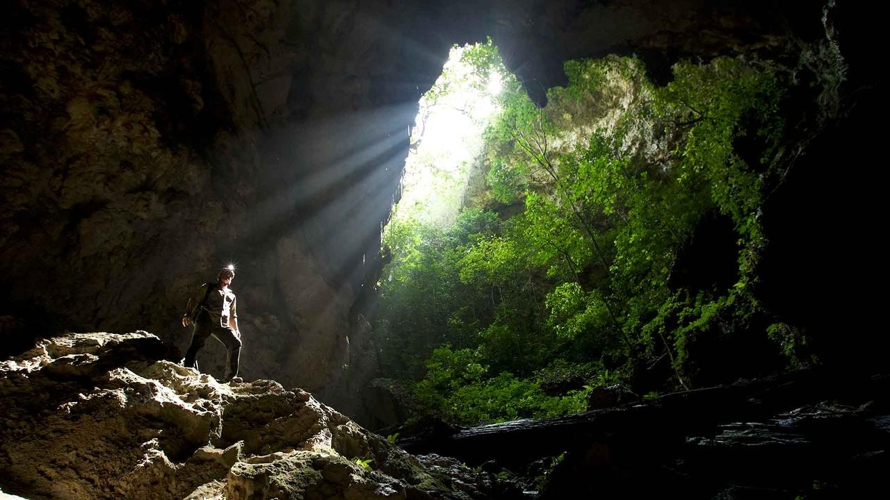 Borneo – Dark Shadow