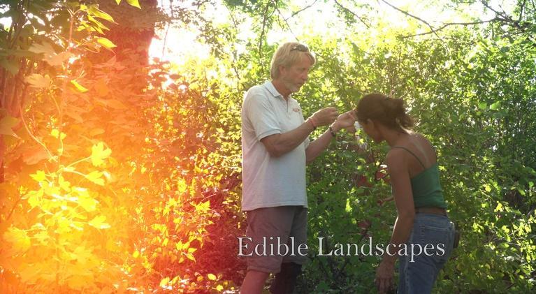 Savor Dakota: Edible Landscapes