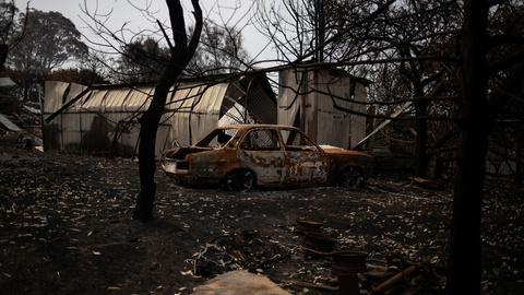 PBS NewsHour -- Australian ecosystems vulnerable amid bushfire catastrophe