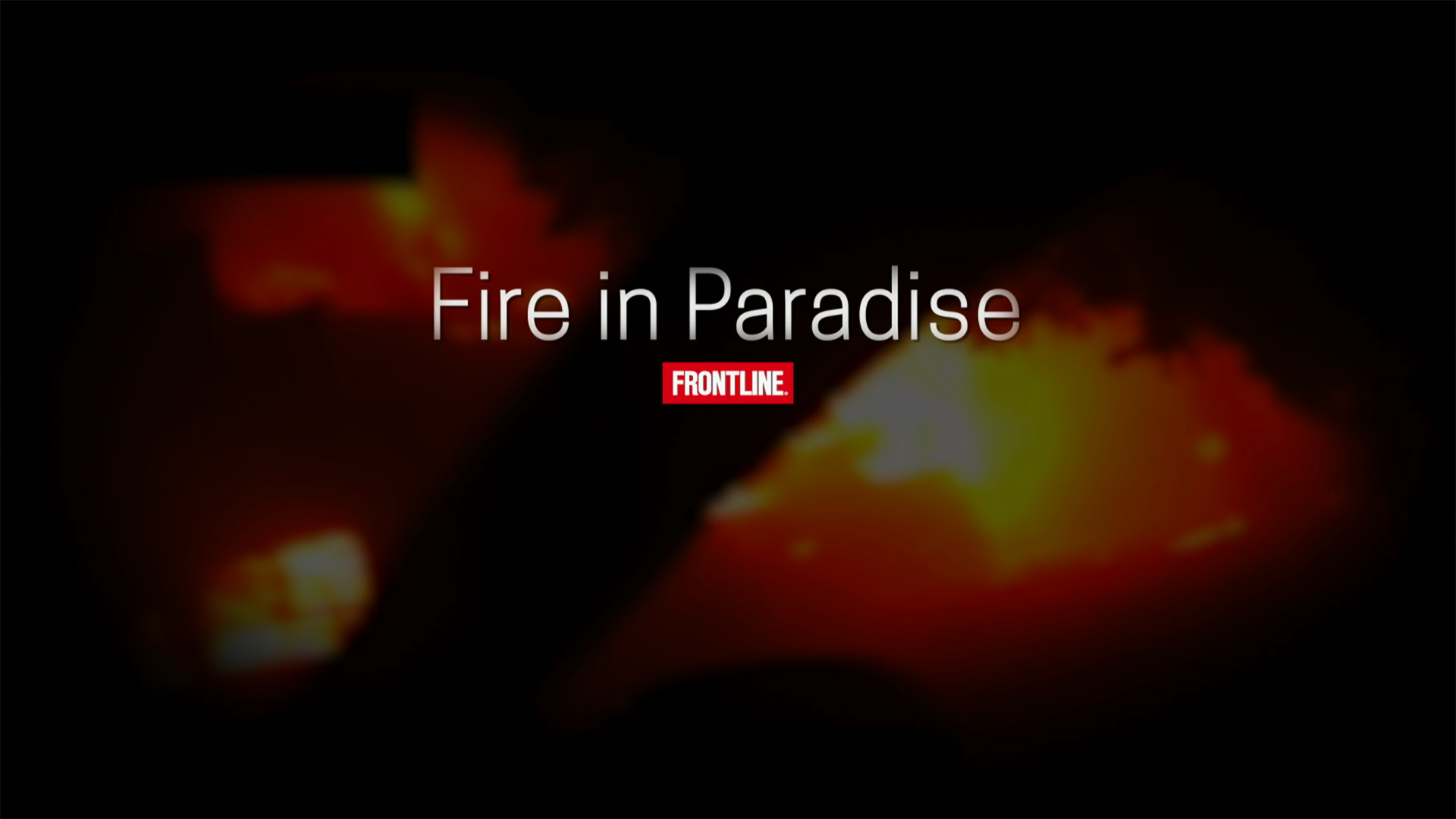 frontline fire in paradise