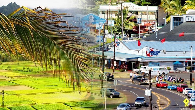 Insights on PBS Hawai'i: Quality of Life on Kaua'i