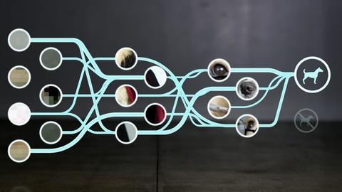 NOVA -- What is a Neural Net?