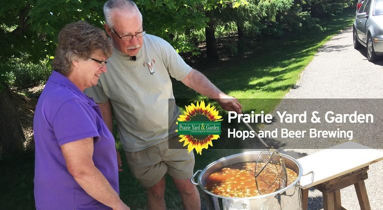 Prairie Yard & Garden: Hops and Beer Brewing