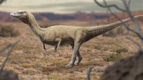 Eons -- When Dinosaur Look-Alikes Ruled the Earth
