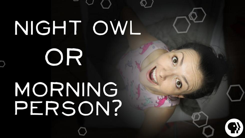 S3 Ep33: What Makes Someone a Night Owl? image