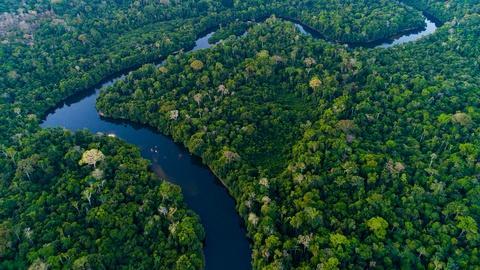 S1 E2: Episode 2 Preview | The Amazon