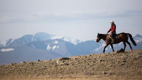 """S37 E8: Equus """"Story of the Horse""""   Episode 1: Origins"""