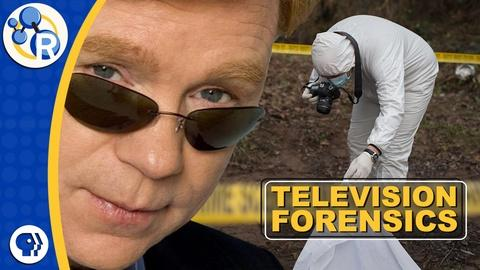Reactions -- TV Forensics: What Do CSIs Actually Do?