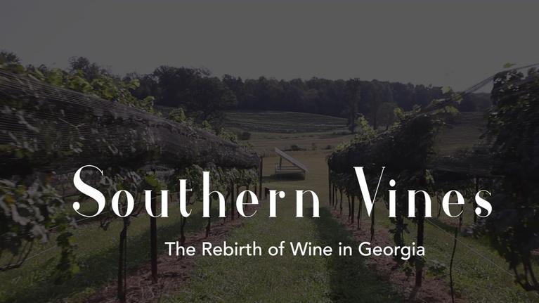 GPB Originals: Southern Vines: The Rebirth of Wine in Georgia