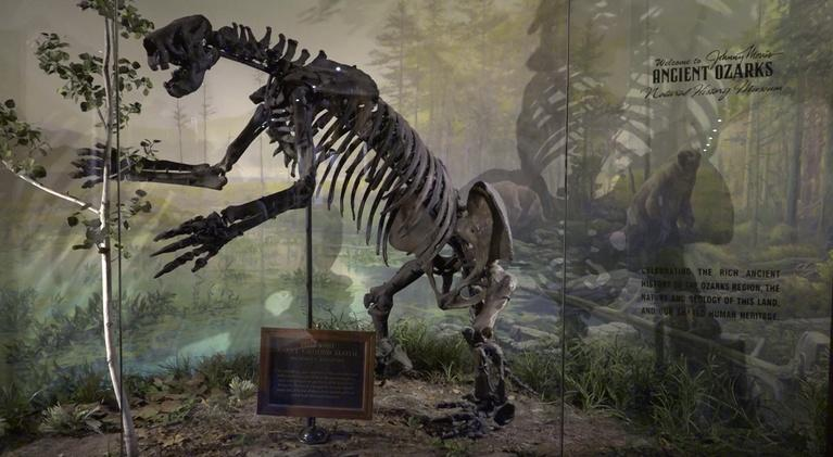 OzarksWatch Video Magazine: Ancient Ozarks Natural History Museum