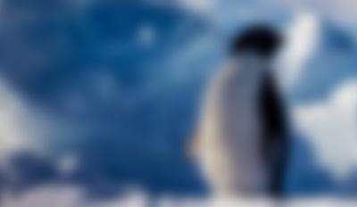 Antarctic Extremes