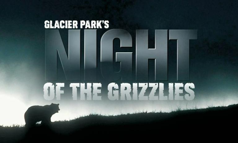 Glacier Park's Night of the Grizzlies