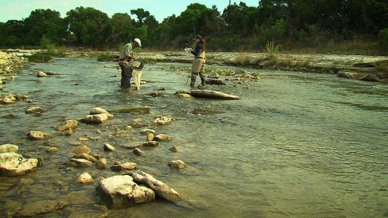 Texas Parks and Wildlife: Grubh's Bugs, Bird Calls & Shotgun Tips